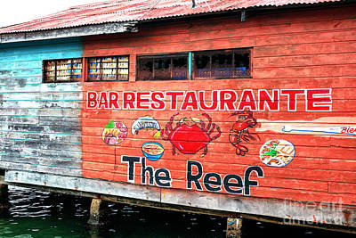 Photograph - The Reef Bocas Del Toro Panama by John Rizzuto
