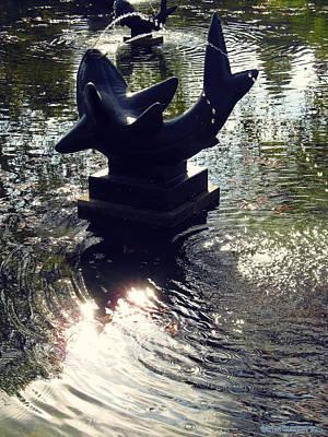 The Reflecting Pool Art Print by Garth Glazier