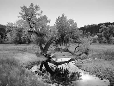 Photograph - Eye Of The Stream by Dakota Light Photography By Dakota