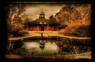 Photograph - The Reflection Pool by Darren Fisher