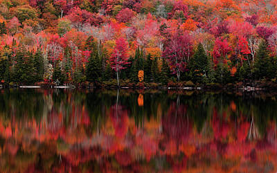 Photograph - The Reflection by Tim Kirchoff