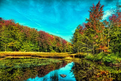 Photograph - The Reflections Of Fall by David Patterson