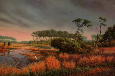 The Refuge Assateague Island Va Original by Barry DeBaun