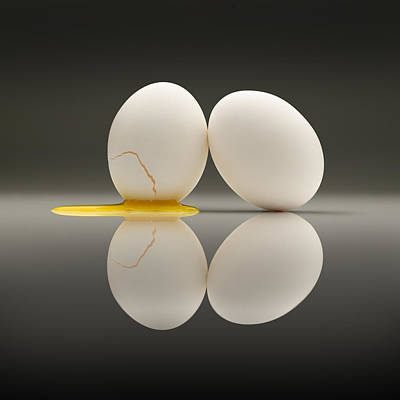 Eggs Photograph - The Relationship by D.a.wagner