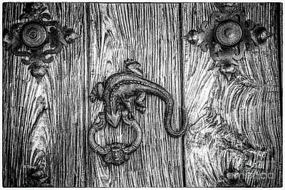 Photograph - The Reptile Door Knock  by Rene Triay Photography