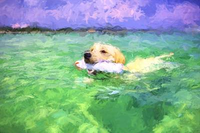 Photograph - The Retriever  by JC Findley