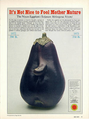Photograph - The Richard Nixon Eggplant by Peggy Barnett