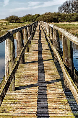 Rickety Bridge Photograph - The Rickety Bridge by Michelle Bailey