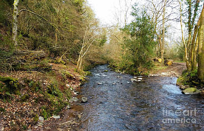 Photograph - The River At Horner by Stuart Attwell