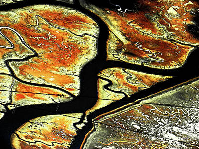 Photograph - The River Bends by Elizabeth Hoskinson