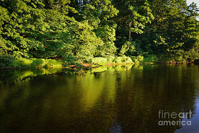 The River Swale Art Print by Nichola Denny