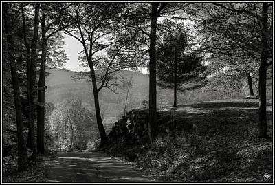 Photograph - The Road From Here by Wayne King