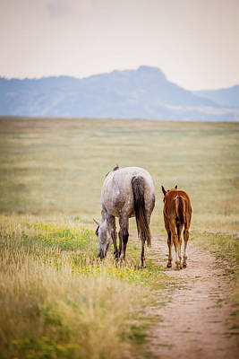 Photograph - The Road Home by Fast Horse Photography