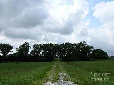 Photograph - The Road Home by Martha Johnson