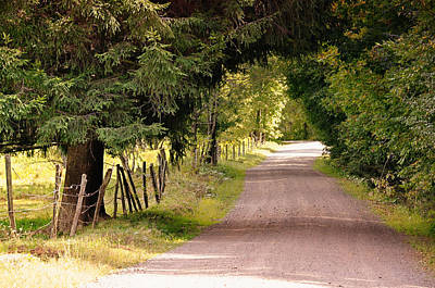 Photograph - The Road Less Traveled by JAMART Photography