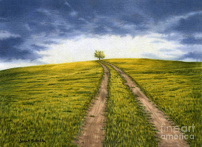 Pencil Painting - The Road Less Traveled by Sarah Batalka