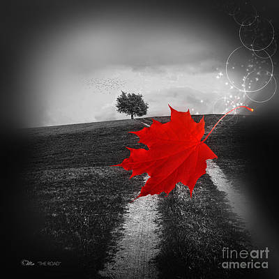 Photograph - The Road by Mo T