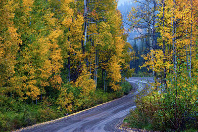 Mellow Yellow - The Road Of Beauty by John De Bord