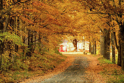 Landscape Photograph - The Road Through Vermont Fall Foliage by Jeff Folger