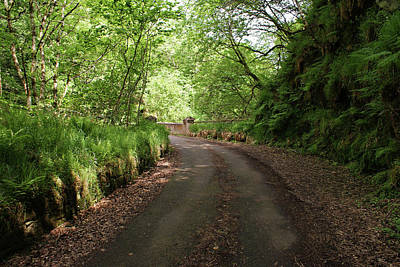 Photograph - The Road To Banagher Dam by Colin Clarke