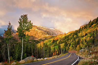 Photograph - The Road To Bear Lake by Ronda Kimbrow