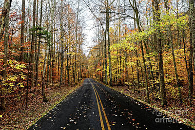 Photograph - The Road To Fall by Paul Mashburn