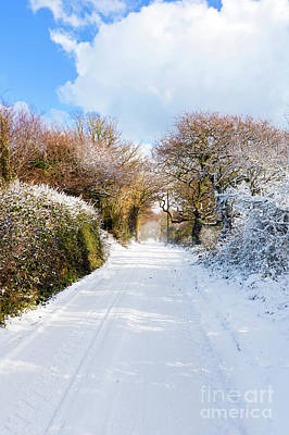 Stocktrek Images - The Road to Restronguet by Terri Waters
