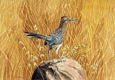 Roadrunner Drawing - The Roadrunner by Timothy Livingston