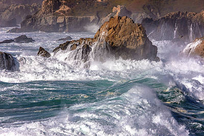 Photograph - The Roar Of The Surf 2016 by Ralph Nordstrom
