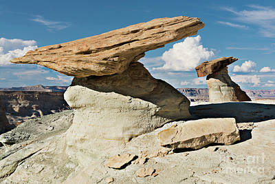 Photograph - The Rock Factory - Stud Horse Point by Sandra Bronstein