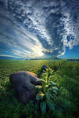 Photograph - The Rock by Phil Koch