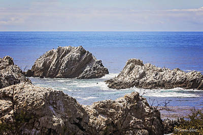 Photograph - The Rocks Of Bird Island Trail by Deana Glenz