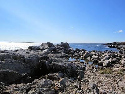 Photograph - The Rocky Shore by Patricia Urato