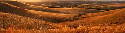 The Rolling Hills Of Konza Prairie Art Print by Jim Richardson