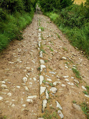 Photograph - The Roman Road by Mike Shaw