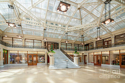 Photograph - The Rookery by David Levin