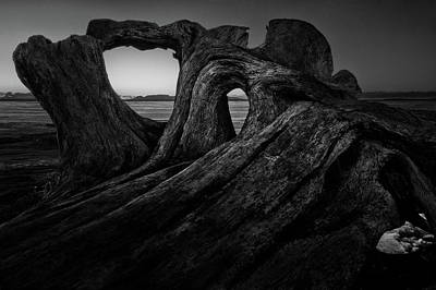 Gichigami Photograph - The Roots Of The Sleeping Giant Bw by Jakub Sisak