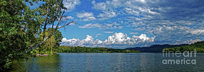 Photograph - The Rope Swing by Paul Mashburn
