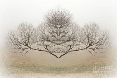 Rorschach Digital Art - The Rorschach Tree by Jim Cook