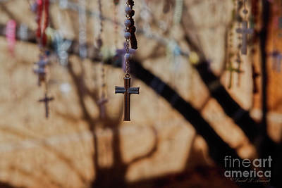 Photograph - The Rosary Tree by David Arment