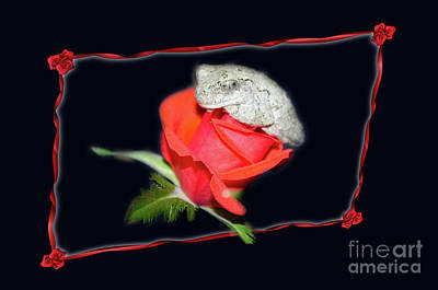 Photograph - The Rose And The Frog Tee-shirt by Donna Brown