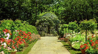 The Rose Arbor Print by Diana Angstadt