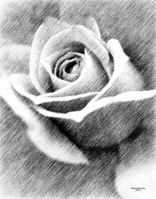 Digital Art - The Rose Drawing by Artful Oasis