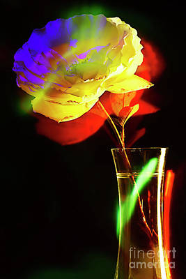 Little Mosters - THE ROSE in A GLASS VASE. by Alexander Vinogradov