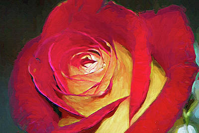 Photograph - The Rose by Larry Bishop