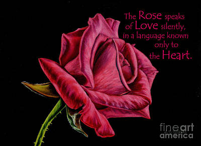 Black Background Painting - The Rose Speaks  by Sarah Batalka