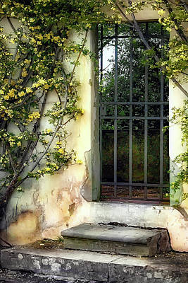 The Rose Vined Door Art Print by Lynn Andrews