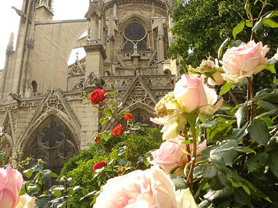 The Roses Of Notre Dame Art Print by John Julio