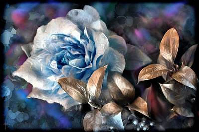Garden Flowers Photograph - The Roses Of Sissi B by Daniel Arrhakis
