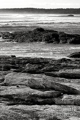Maine Coast Photograph - The Rugged Coast Of Maine by Olivier Le Queinec